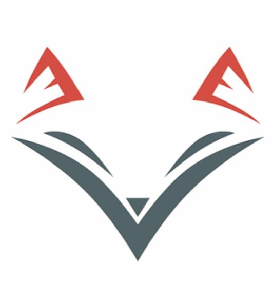 fox détectives